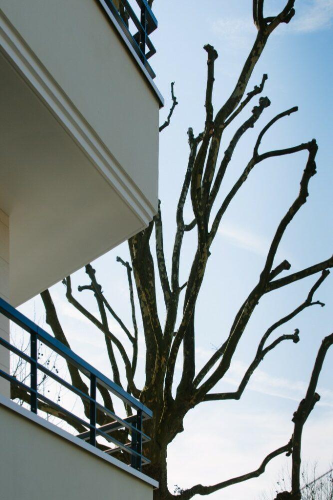 HOME CONCEPT - appartements neufs - Ile de France - immeuble neuf - jardin - 5
